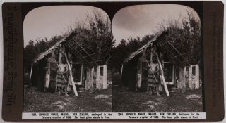 Collection of Thirty-Six Original Albumen Stereoviews Showing New Zealand Landscapes, Titled:]...