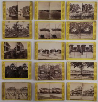 Collection of Fifteen Original Albumen Stereoview Photographs of Florida from the America...