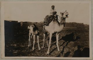[Album With 53 Original Photographs of a Nile Voyage Compiled by Millie & Hamilton Johnstone from Dec. 1918 - Jan. 1919].