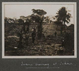 "[Album with 96 Original Gelatin Silver Photographs of the British Gold Coast Colony, Showing the Hospital and Medical Officer's Office and Quarters in Sekondi, the Construction of Sekondi Waterworks, Street Drains in Chama, ""Preventive Station, Fasu,"" General and Street Views of Sekondi, Axim, Half Assini, Tarkwa, Chama, Dixcove, Kade, Anum, ""Derelict Gold Dredge at Kibbi,"" etc.]"