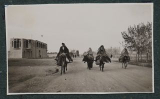Album with 144 Original Gelatin Silver Photos Taken by a German Resident of Tehran in the...