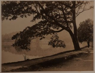 [Album with Forty-Nine Early Original Albumen Photographs of Views of Sri Lanka with Many Views of Colombo and Kandy].