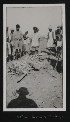 [Album with 96 Original Gelatin Silver Photos from Big Game Hunting Trips in the Nilgiri Mountains, Kanara Jungle and Valleys of Godavari and Wardha Rivers in the Central and Southern India].