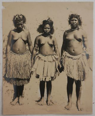 [Collection of Nineteen Loose Gelatin Silver Photos, Taken During Professor William Patten's Zoological Expedition to New Britain (Papua New Guinea) in 1912].